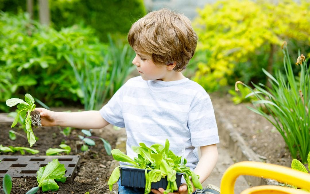 4 Home Improvement Projects for Kids to Help With